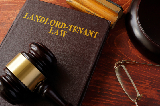 landlord-tenant book title on old book with gavel on top on a desk